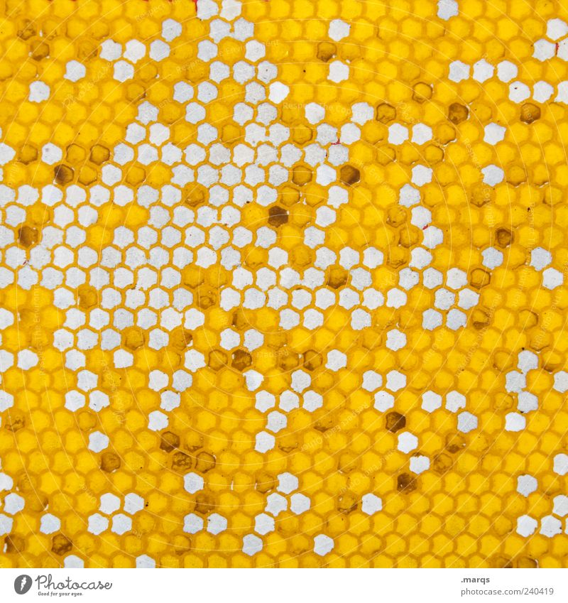Colour Yellow Style Exceptional Arrangement Design Many Sign Whimsical Copy Space Honeycomb Structures and shapes Abstract Pattern Honeycomb pattern