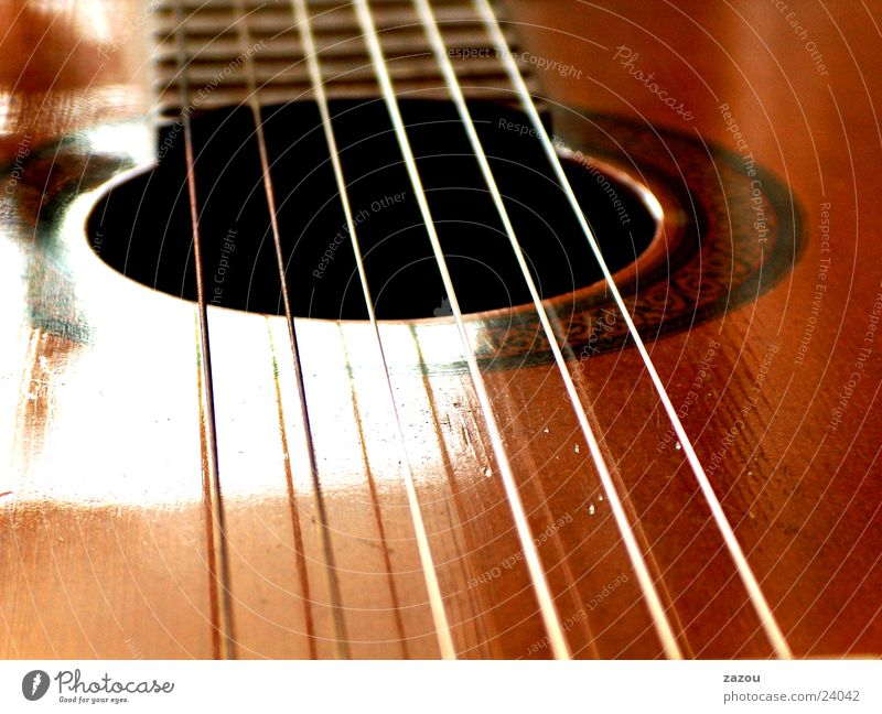 play my guitar again Musical instrument string Spanish guitar Leisure and hobbies Guitar Macro (Extreme close-up)