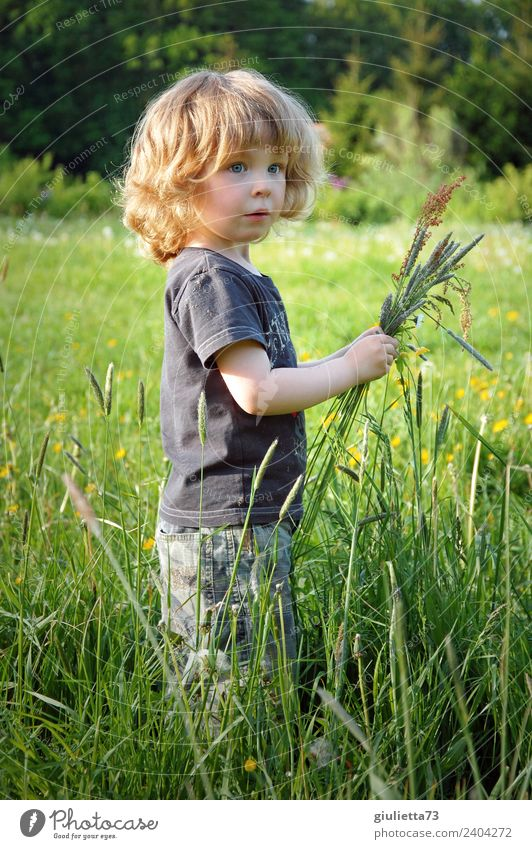 Child Human being Nature Forest Healthy Spring Meadow Grass Boy (child) Happy Park Blonde Infancy Idyll Beautiful weather Observe