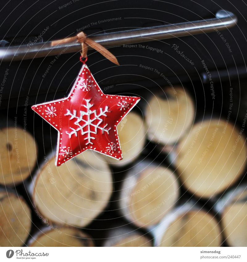 for christmas! Stars Hang Illuminate Red Christmas & Advent Heating by stove Wood birch Warmth Safety (feeling of) Jewellery Christmas decoration Cuddly