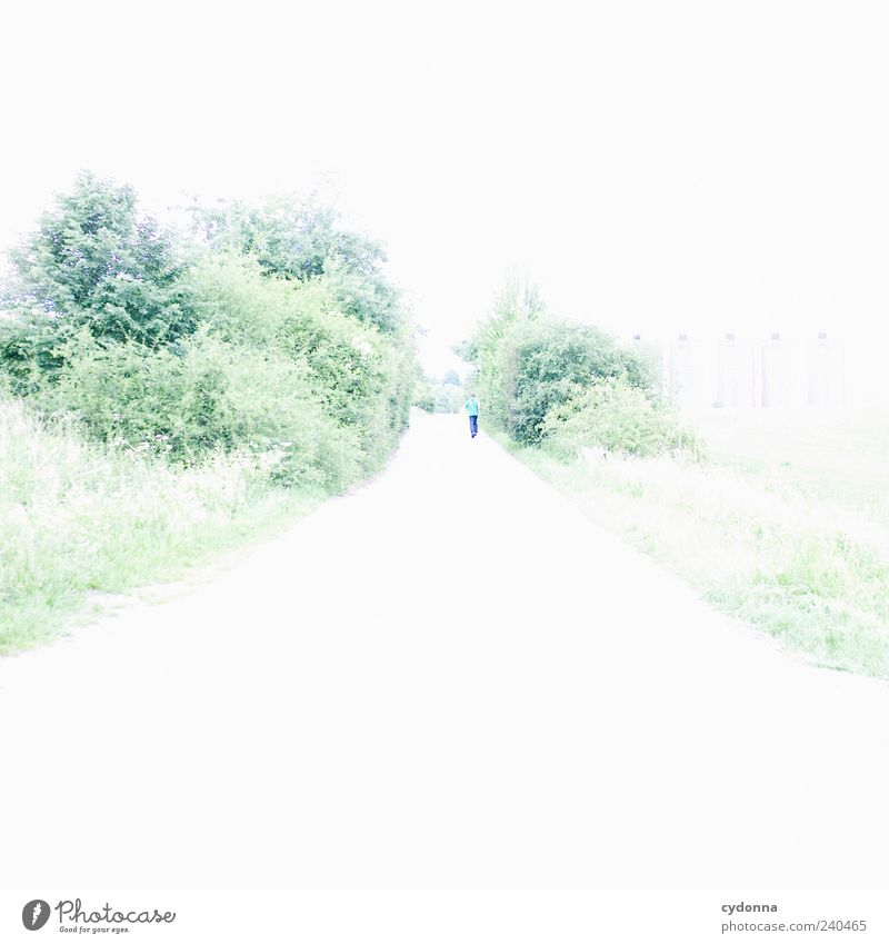 run away Lifestyle Well-being Relaxation Calm Trip Far-off places Freedom Jogging Environment Nature Landscape Bushes Meadow Street Lanes & trails Movement