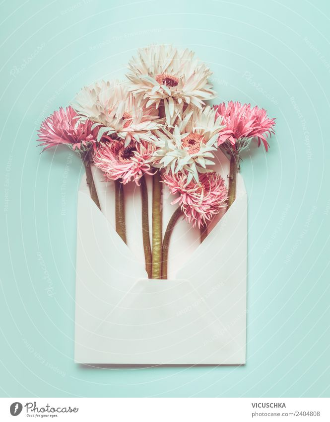 Summer Plant White Flower Background picture Style Feasts & Celebrations Pink Design Decoration Birthday Paper Wedding Bouquet Hip & trendy Turquoise