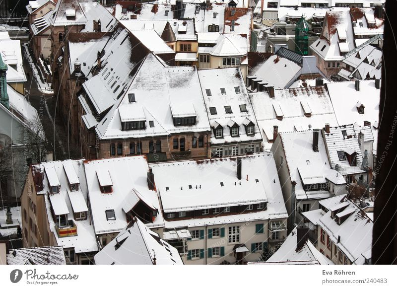snow roofs Environment Winter Snow Town Downtown House (Residential Structure) Building Window Roof Looking Fresh Historic Tall Cold Above Point White