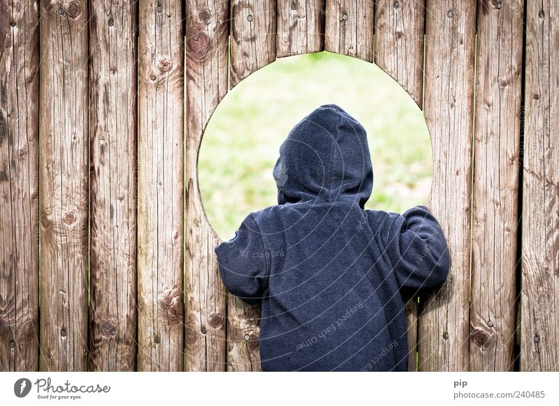 Human being Child Blue Playing Wood Infancy Back Round Curiosity Toddler Hollow Wooden board Sweater Hooded (clothing) Playground Barrier