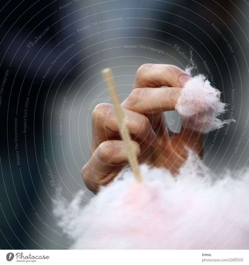 sweetie Candy Cotton candy Nutrition Hand Fingers Eating Infancy Rod Colour photo Exterior shot Detail Copy Space top Copy Space bottom Artificial light