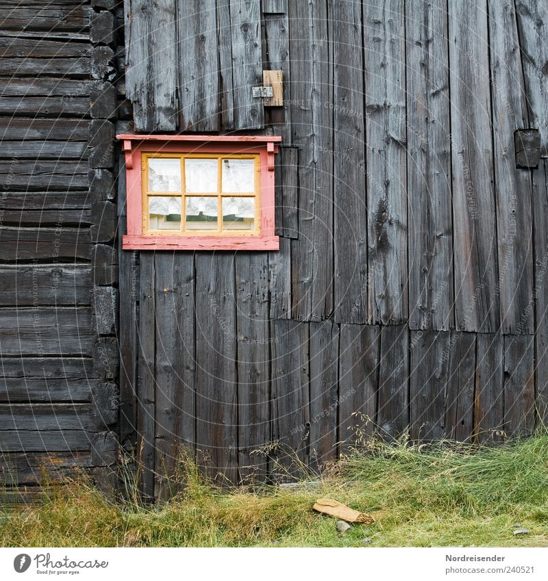 Old House (Residential Structure) Window Grass Wood Architecture Line Pink Facade Exceptional Stripe Nostalgia Old fashioned Wooden house Wooden hut