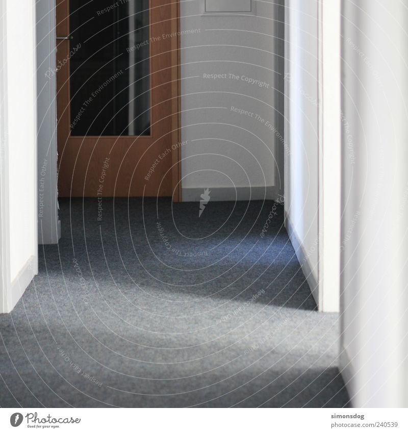 Between door and hinge Door Dark Bright White Hallway Flat (apartment) Corridor Carpet Colour photo Interior shot Deserted Day Artificial light Light Shadow