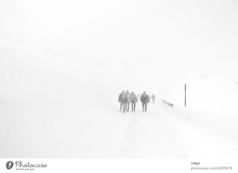 Human being Landscape Winter Street Adults Cold Lanes & trails Snow Group Gray Moody Trip Going Snowfall Leisure and hobbies Hiking