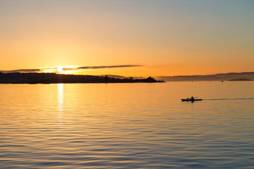 Oslo Fjord Kayaking at sunset Sky Nature Vacation & Travel Colour Landscape Sun Ocean Relaxation Joy Beach Lifestyle Sports Lake Watercraft Action Adventure