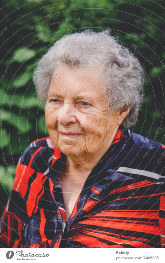 Grandmother III Feminine Woman Adults Female senior Grandparents Senior citizen Life 1 Human being 60 years and older Old Authentic Society Healthy Identity