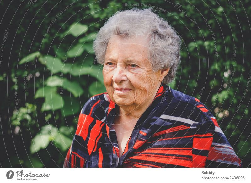 Grandmother IV Feminine Woman Adults Female senior Grandparents Senior citizen Life 1 Human being 60 years and older Old Authentic Society Healthy Identity