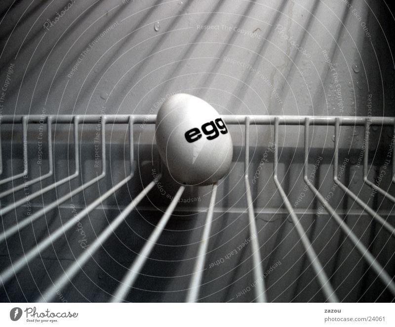 The captured egg Cold Art Sculpture Icebox Eggshell Grating Easter Easter egg Hope Nutrition Penitentiary Close-up