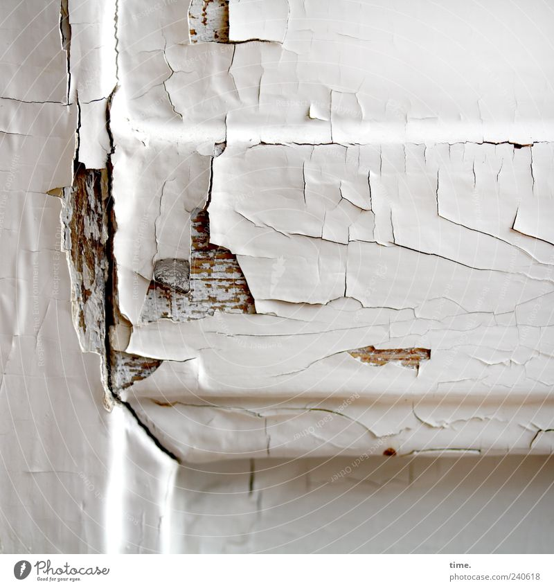 Old White Wood Brown Door Broken Gloomy Transience Derelict Decline Crack & Rip & Tear Nostalgia Sharp-edged Irritation Feeble Varnish