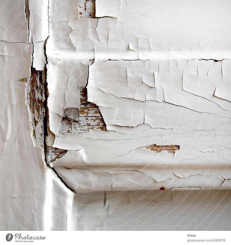 paint damage Door Varnish Wood Old Sharp-edged Broken Gloomy Brown White Nostalgia Feeble Decline Transience Crack & Rip & Tear Derelict Flake off Abrasion
