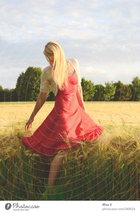 Human being Sky Nature Youth (Young adults) Beautiful Red Summer Adults Landscape Feminine Grass Hair and hairstyles Fashion Young woman Blonde Field
