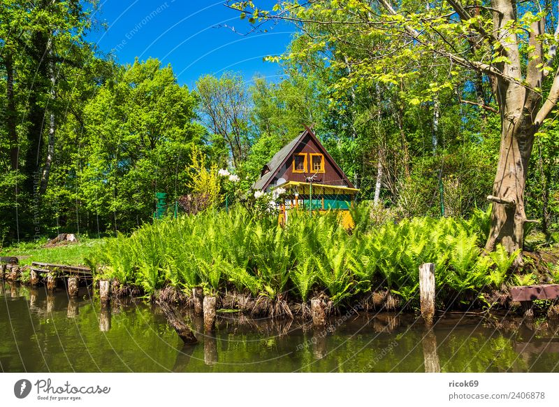 Building in the Spreewald near Lehde Vacation & Travel Tourism House (Residential Structure) Nature Landscape Water Tree Forest River Tourist Attraction Old