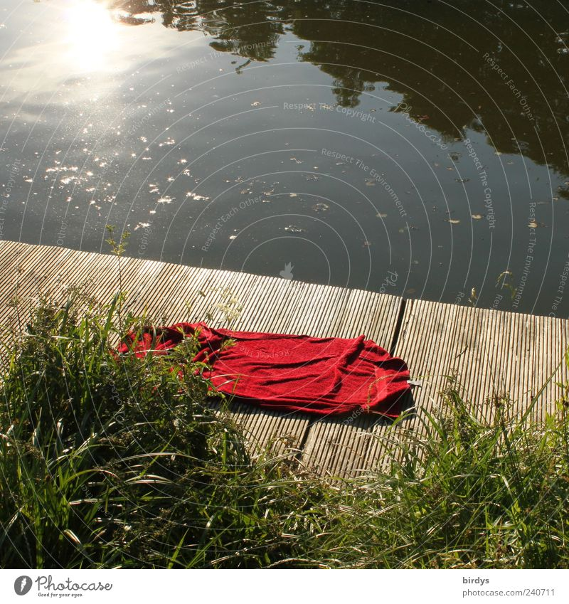 forsake sb./sth. Swimming & Bathing Summer Lakeside Authentic Natural Red Romance Loneliness Relaxation Leisure and hobbies Nature Red rag red towel Berth