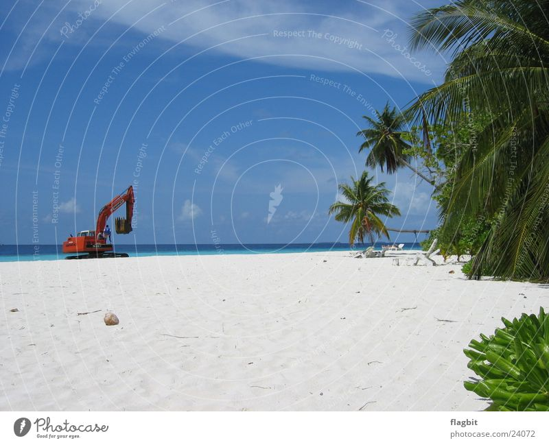 Work in Paradise Beach Excavator Palm tree Ocean Vacation & Travel Work and employment Sand
