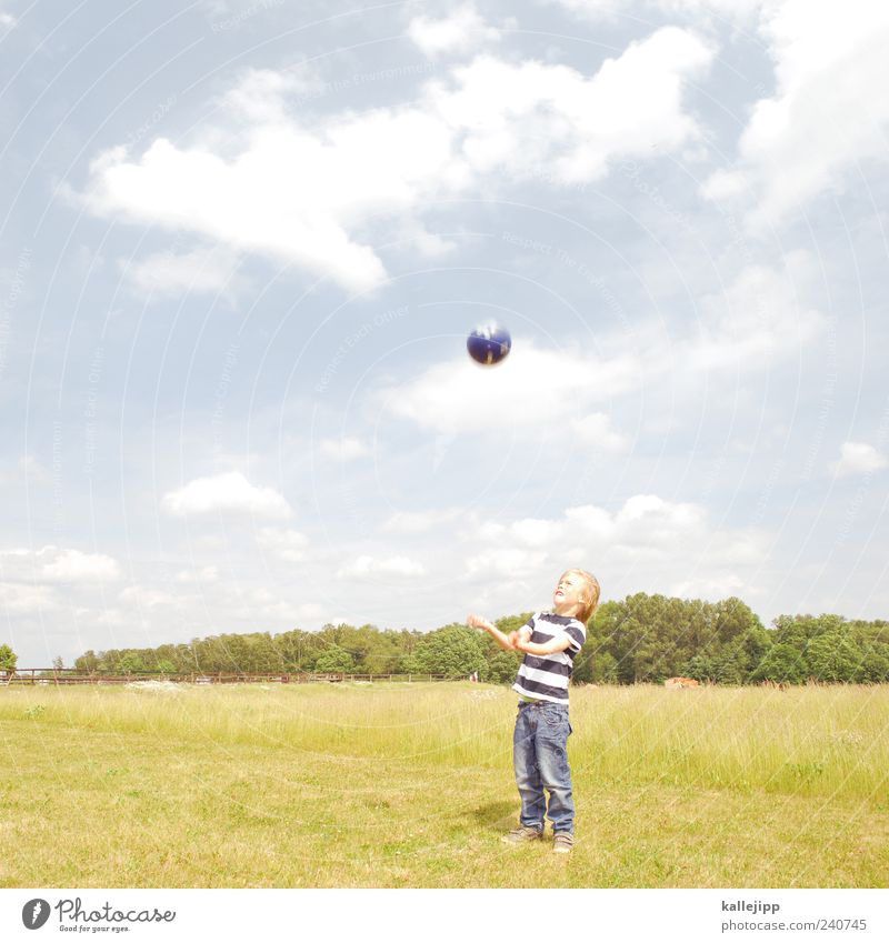 Human being Child Sky Nature Tree Plant Summer Far-off places Environment Landscape Meadow Life Playing Boy (child) Park Wind