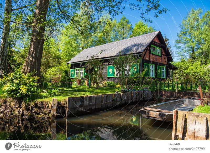 Nature Vacation & Travel Old Green Water Landscape Tree Relaxation House (Residential Structure) Calm Forest Architecture Environment Spring Building Tourism