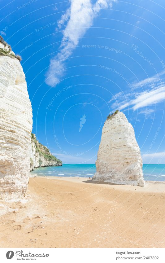 Vieste, Italy - Huge chalk cliffs at the beach of Vieste Apulia Beach chalk rocks Cliff Coast Height Hill huge Illuminate Tourist Attraction Landmark Landscape
