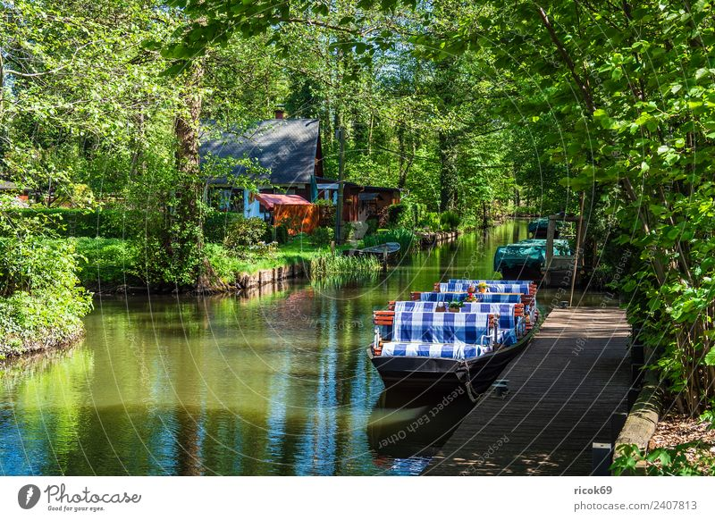 Boat in the Spreewald in Lehde Relaxation Vacation & Travel Tourism House (Residential Structure) Nature Landscape Water Spring Tree Forest River Village