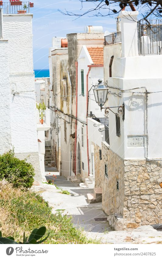 Vieste, Italy - View into an historic alleyway of Vieste Alley Apulia Architecture Calm Channel City Cobblestones Facade Fishing village Gap Historic Old town