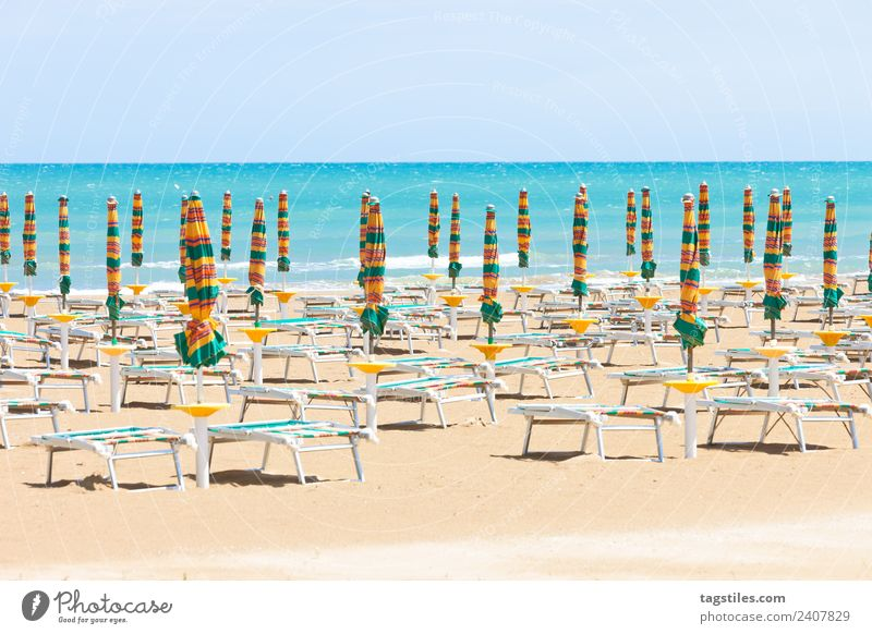 Vieste, Italy - Sunloungers at the clean beach of Vieste Apulia Beach Coast Green Horizon Idyll Illuminate Lighting Illumination Landscape Mediterranean sea
