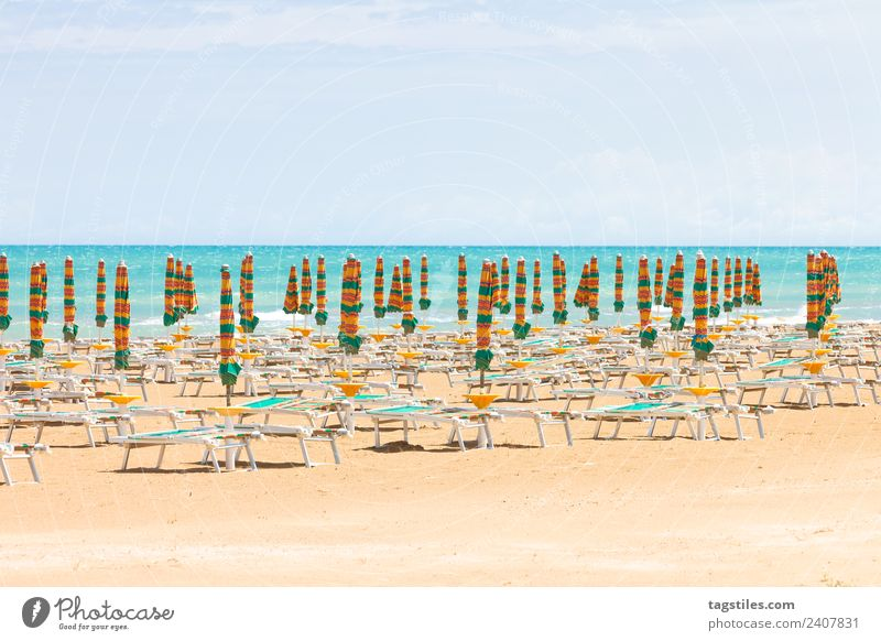 Vieste, Italy - Sunshades at the clean beach of Vieste Apulia Beach Coast Green Horizon Idyll Illuminate Lighting Illumination Landscape Mediterranean sea