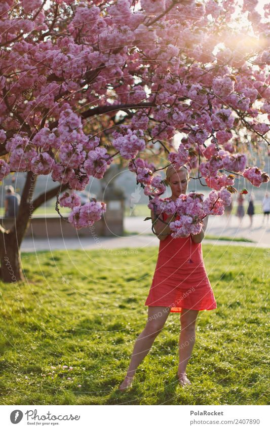 #A# Spring Blood Art Esthetic Nature Love of nature Experiencing nature Blossom Spring fever Spring day Spring colours Spring celebration Woman Exterior shot