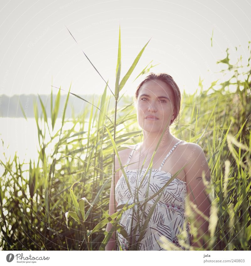 Woman Human being Nature Beautiful Sky Sun Plant Summer Feminine Lake Adults Esthetic Stand Bushes Common Reed Lakeside