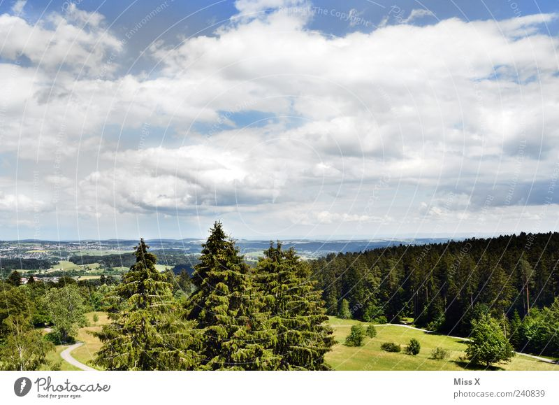 Sky Nature Vacation & Travel Green Tree Summer Clouds Relaxation Forest Far-off places Landscape Meadow Freedom Horizon Weather Trip