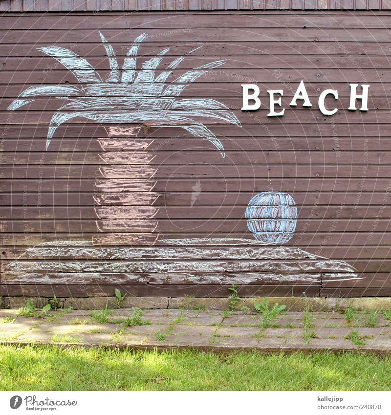 beach boys Lifestyle Joy Happy Vacation & Travel Tourism Far-off places Summer Summer vacation Beach Ocean Island Environment Nature Landscape Plant Tree