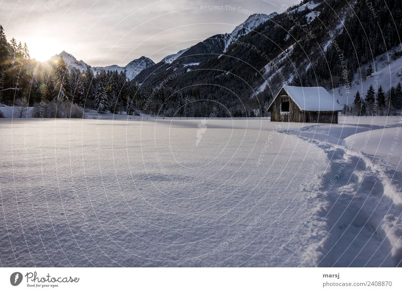 Another onset of winter | Wrong report Nature Landscape Winter Snow Alps Mountain Cold Tracks Hut Barn Hayrick Snowscape Idyll Cliche Colour photo