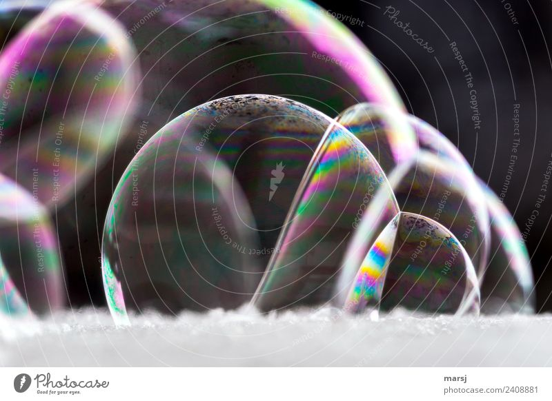 Group cuddling of soap bubbles... Harmonious Soap bubble Spherical Sphere Glittering Illuminate Exceptional Dark Thin Authentic Fantastic Uniqueness