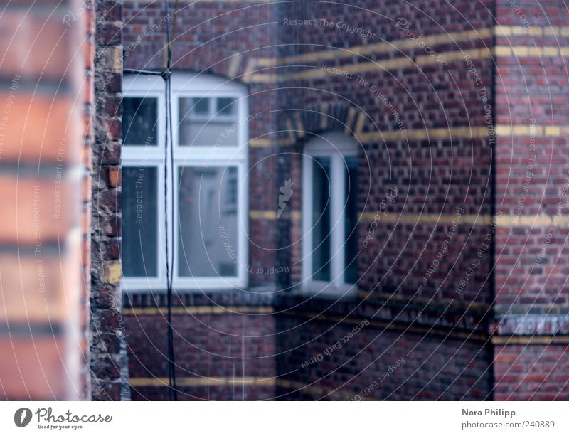 House (Residential Structure) Window Wall (building) Architecture Building Wall (barrier) Line Facade Living or residing Gloomy Retro Wet Manmade structures Downtown Brick Old town