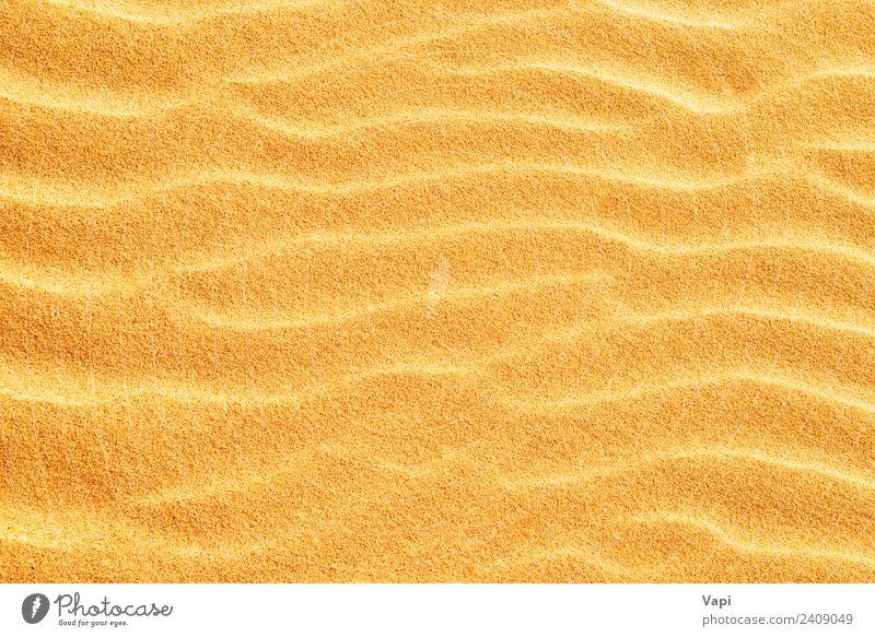 Sand texture on the beach Design Vacation & Travel Summer Beach Wallpaper Nature Elements Sun Sunlight Warmth Drought Coast Desert Natural Clean Brown Yellow