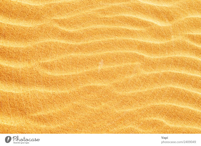 Sand texture on the beach Nature Vacation & Travel Summer Sun White Beach Warmth Yellow Natural Coast Orange Brown Design Gold Clean