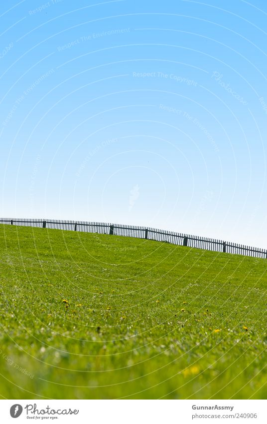 Sky Nature Summer Environment Landscape Meadow Grass Park Contentment Hiking Beautiful weather Hill Pasture Fence Cloudless sky Blue sky