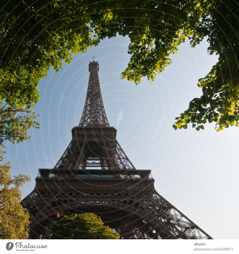 architecture Vacation & Travel Tourism Sightseeing City trip Plant Tree Leaf Paris France Europe Capital city Tower Manmade structures Architecture Eiffel Tower