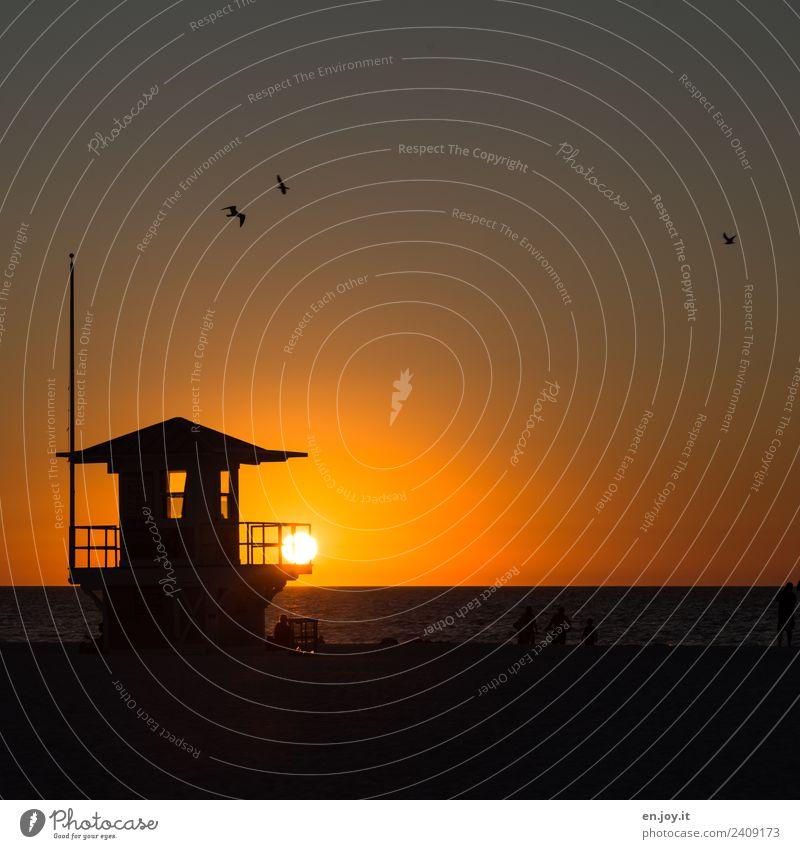 closing time Leisure and hobbies Vacation & Travel Tourism Far-off places Summer Summer vacation Sun Beach Ocean Landscape Sky Horizon Sunrise Sunset Florida