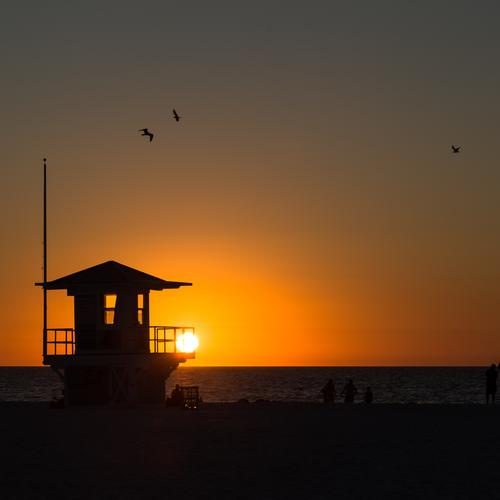 closing time Leisure and hobbies Vacation & Travel Tourism Far-off places Summer Summer vacation Sun Beach Ocean Landscape Sky Horizon Sunrise Sunset Florida