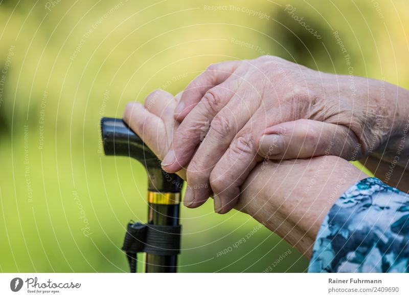 an old woman put her hands on a cane. Retirement Human being Feminine Woman Adults Female senior Mother Hand 1 Old Relaxation To console Serene Loneliness