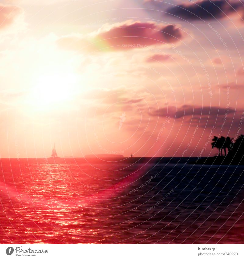 Sky Nature Vacation & Travel Red Sun Summer Ocean Clouds Far-off places Environment Landscape Emotions Coast Freedom Moody Weather