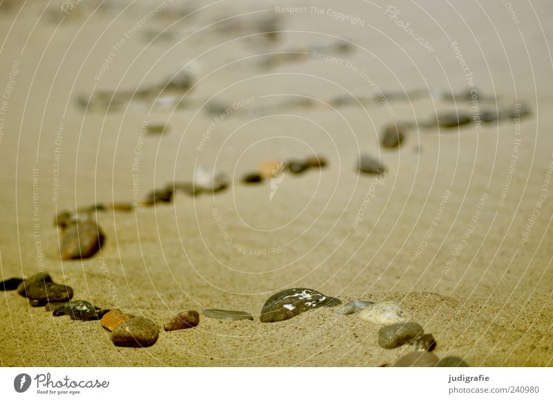 Nature Beach Environment Sand Stone Line Exceptional Uniqueness Row Curve Wiggly line