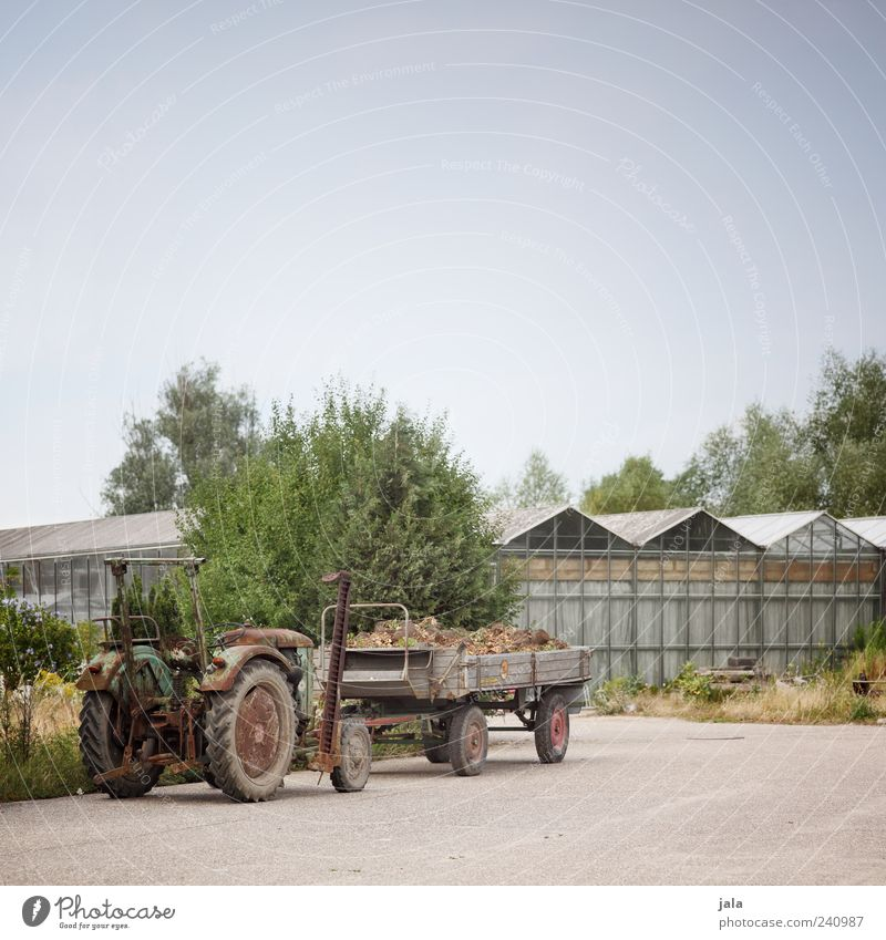 tug Sky Plant Manmade structures Building Tractor Trailer Market garden Greenhouse Colour photo Exterior shot Deserted Copy Space top Day