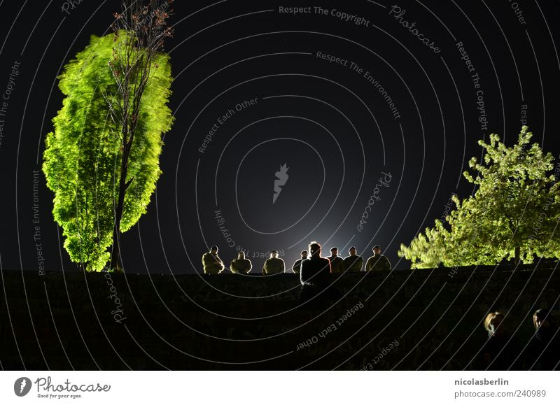 watchdogs Police Officer Human being Nature Night sky Moody Testing & Control Surveillance Police Force Deployment Colour photo Exterior shot Copy Space top