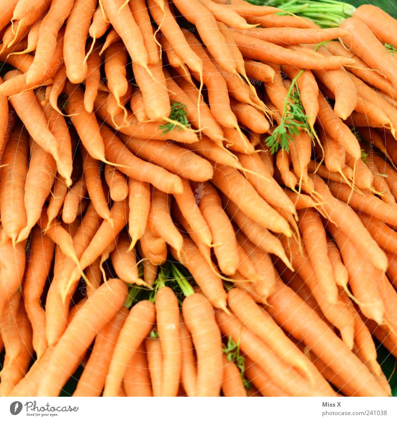 carrot day Food Vegetable Nutrition Organic produce Vegetarian diet Delicious Carrot Orange Root vegetable Harvest Farmer's market Vegetable market
