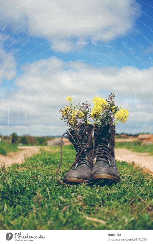 old boots filled with wild flowers outdoors Sky Nature Old Summer Plant Beautiful Landscape Flower Environment Spring Natural Grass Retro Field Dirty Fresh