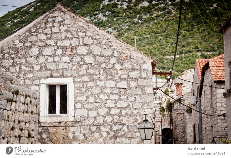 Ston in Croatia Style Joy Vacation & Travel Tourism Trip Summer Summer vacation House (Residential Structure) Village Fishing village Small Town Outskirts